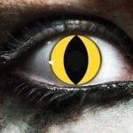Yellow Cat Gothika Contact Lenses